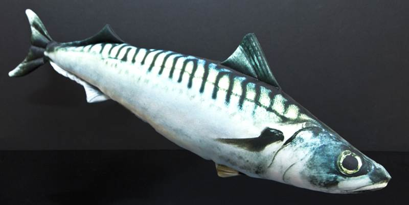 Dekorační polštář - MAKRELA 50cm